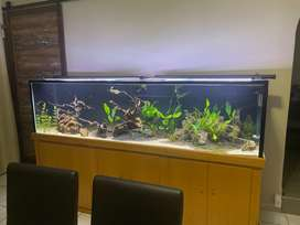 2.4m Tank For Sale