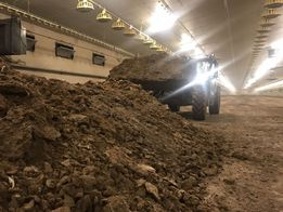 Obornik kurzy bydlęcy bobek nawóz naturalny 25 ton z Dostawą