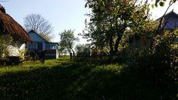 Продам будинок (обійстя) село Тарасівка Ярмолинецького району