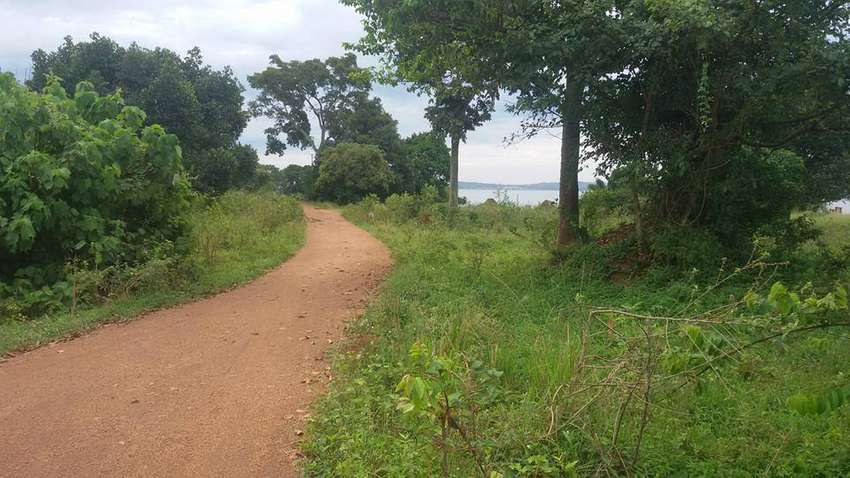 2 acres of land on sale in Entebbe-Bugiri each is at 250m 0