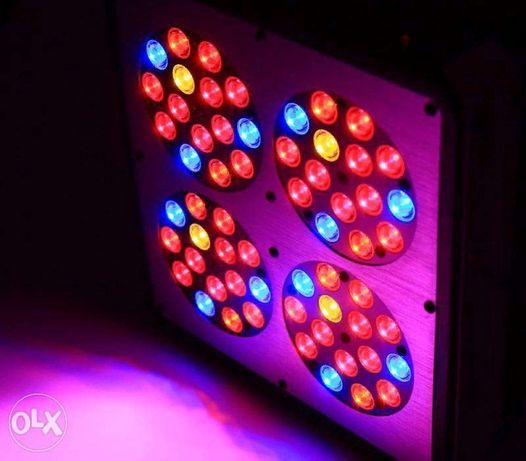 Фитолампа Apollo 4 Full Spectrum (светильник для растений)