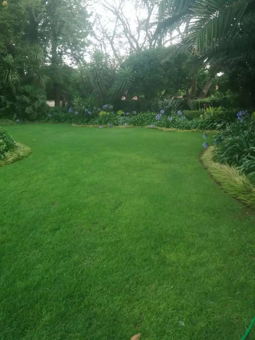Instant Lawn and topsoil