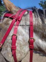 Ogłowie kawaleryjskie XVII w.- bridle polish cavalry