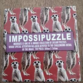 IMPOSSIPUZZLE|100 Pieces|380mm X 260 mm