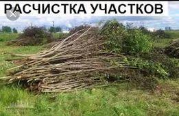 Расчистка участка, спил, выкорчевка деревьев.