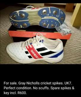 Cricket spikes for sale