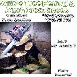 Willy's Boomsloping/Tree services and Mentanances