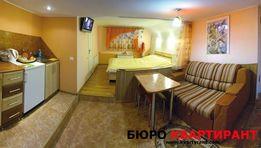 Автономна квартира-студія в приватному будинку.