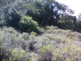 1 hectare of lush unspoilt property in Mozambique
