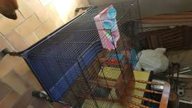 Bunny/rodent Cage for sale