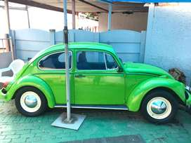 1970 vw beetle 1600 manual