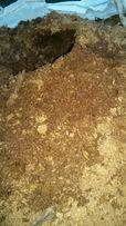torf kwaśny 3.5 pH pod borówkę. borówka amerykańska 250l
