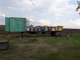 Продам платформу для пчел