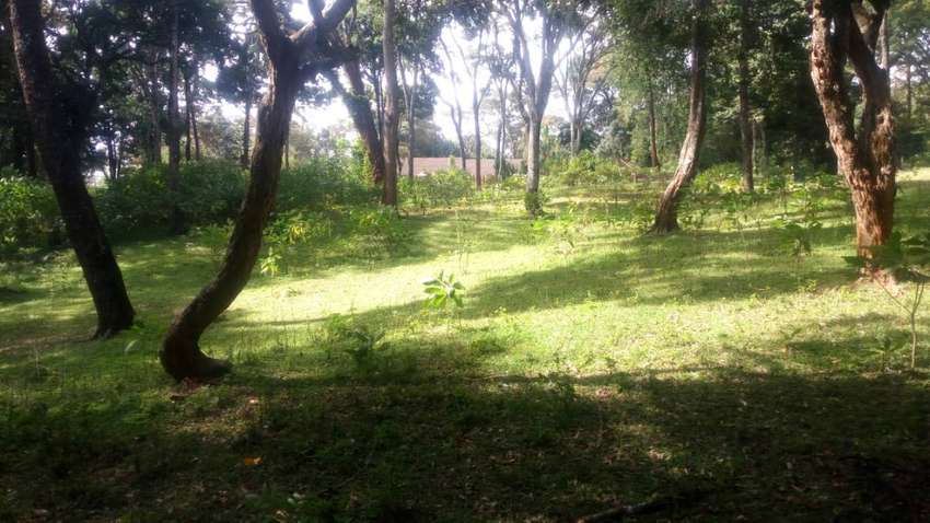 5Acres Quick Sale in Old Muthaiga on sale at 110M per Acre. 0