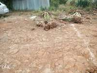 1/8 of an acre in rongai nkoroi 0
