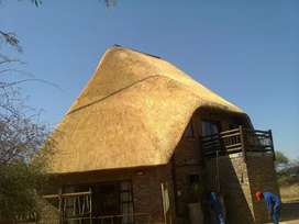 Thatch laps and all swimming pools renovations