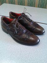 Мужские туфли KOIL