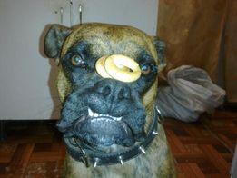 Дрессировка собак(курсы)