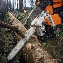 Спил деревьев, обрезка веток кустов, распил дров и другие работы бенз