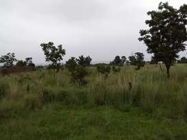 1.0014 hectare of open land for sale.