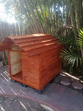 Handmade Kennel and avairy