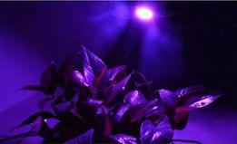 Фитолампа, лампа, для растений, цветов