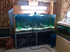 T8 4 foot (1.2meter)fish tank light with 2 x bulbs and waterproof