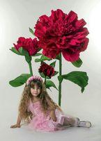 Ростовые цветы,бумажные цветы,оформление фотозон