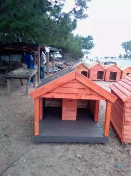 Wooden dog kennel with veranda
