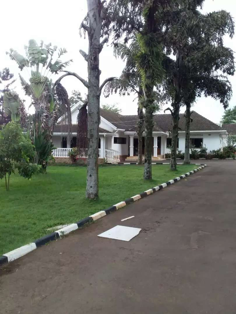 Residential bungalow in bugolobi for sale 0