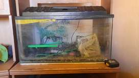 Fish tank in 100% condition