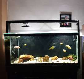 380 Glass Tank with Built-in Filtration