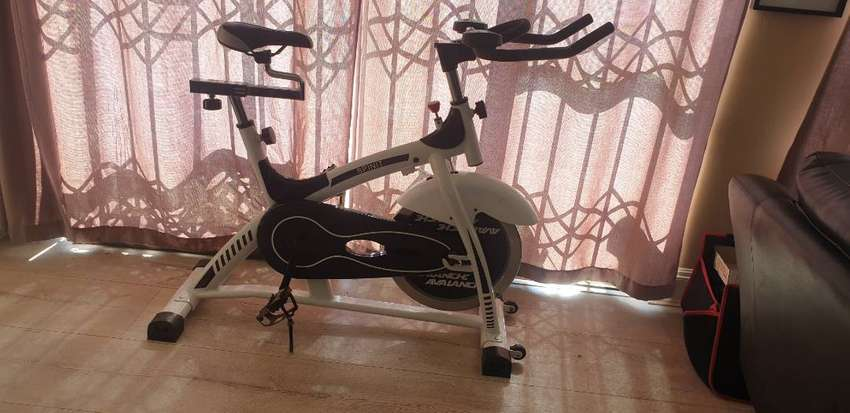 Avalanche spinit exercise bike 0