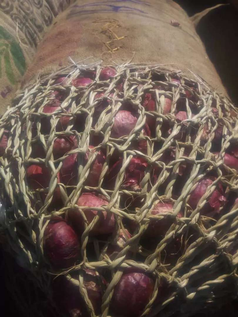 Onions in large quantity for sale 0