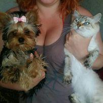 Передержка собак кошек приют гостиница для животных