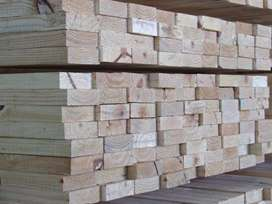 Pine Timber Supplier (Untreated)