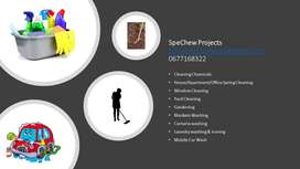 Cleaning Chemicals, Cleaning, Gardening, Washing & Ironing Services