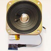 Звуковой модуль для VIP сувениров