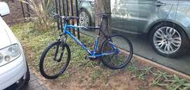 Silverback bucycle 24 speed extra large frame