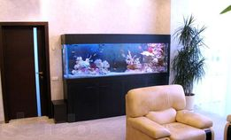 Обслуживание аквариумов в Донецке и Макеевке