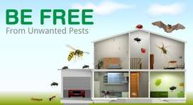 PEST CONTROL AND FUMIGATION SPECIALS ALL OVER CAPE TOWN