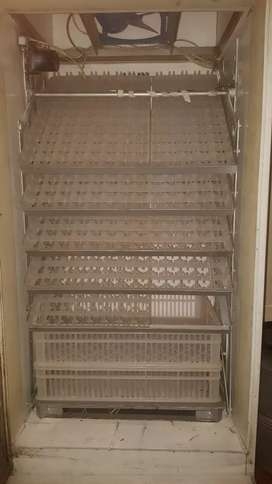 Incubator and cage for sale