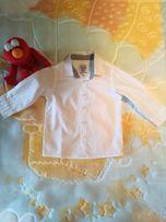 Koszula niemowlęca Cool Club 74