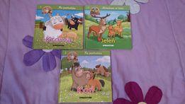 Książeczki dla dzieci o zwierzętach. Wydawnictwo DAGOSTINI