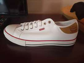Levis Sneakers (Brand New)