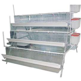 New 120 chicken Egg layers cages