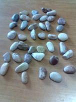 Красивые морские камни