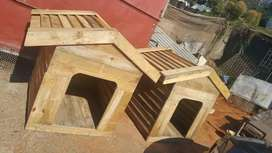 wooden kennels for large dogs dogs