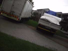 Furniture removals trans