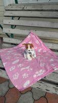 Подстилка, коврик,одеялко, плед Размер 110/120 см.